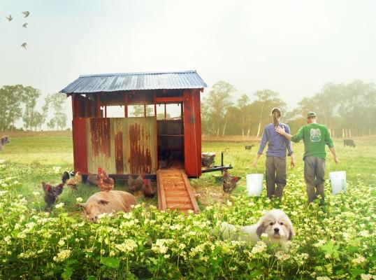 大的·小·農場理想的生活的做法