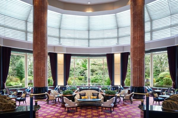 Lobby lounge the lounge