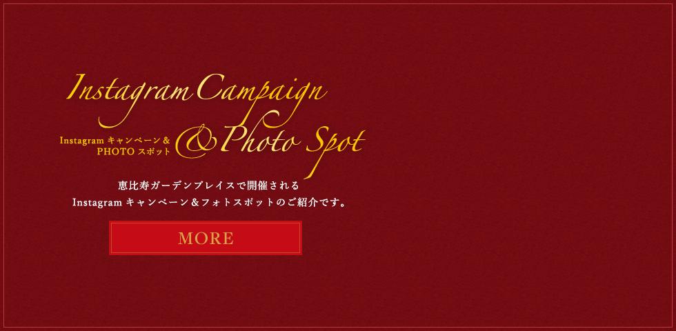 是在Instagram促销活动&PHOTO景点惠比寿花园中举行的圣诞节活动的介绍。